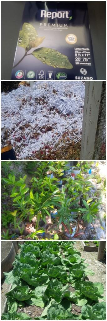 twh_compost_garden
